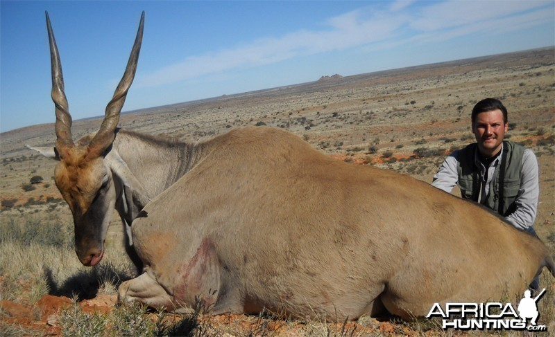 Eland hunted with Wintershoek Johnny Vivier Safaris