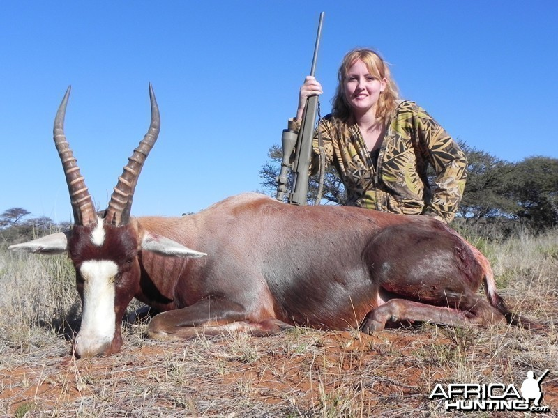 Blesbok hunted with Wintershoek Johnny Vivier Safaris
