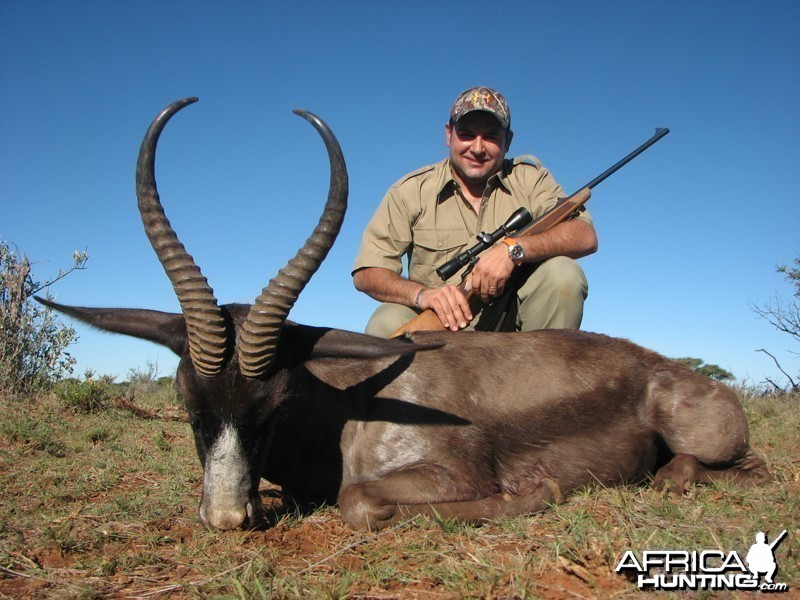 Black Springbok hunted with Wintershoek Johnny Vivier Safaris