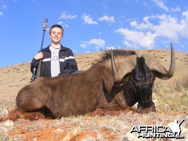 Black Wildebeest hunted with Wintershoek Johnny Vivier Safaris