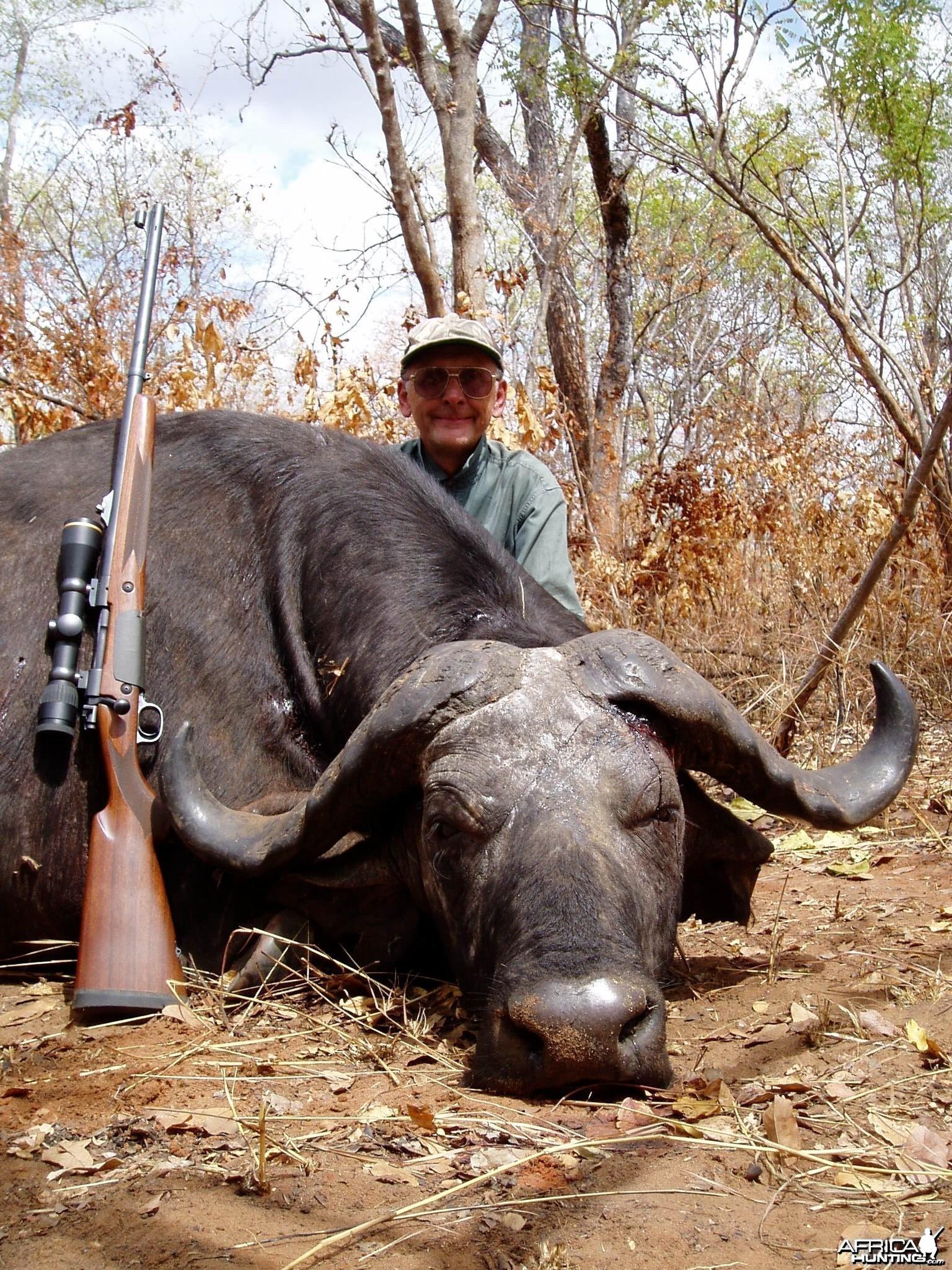 Kilombero Selous 1 Cape Buffalo Tanzania