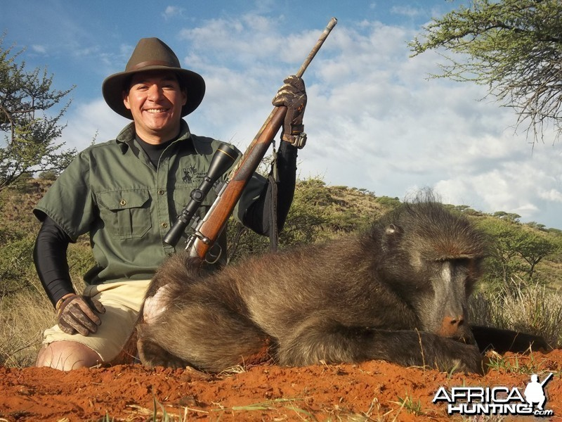 Baboon hunted with Wintershoek Johnny Vivier Safaris