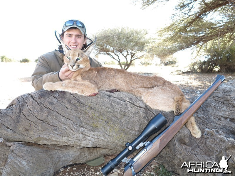Caracal hunted with Wintershoek Johnny Vivier Safaris