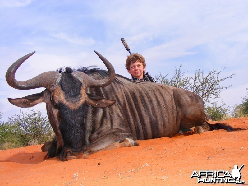 Blue Wildebeest hunted with Wintershoek Johnny Vivier Safaris