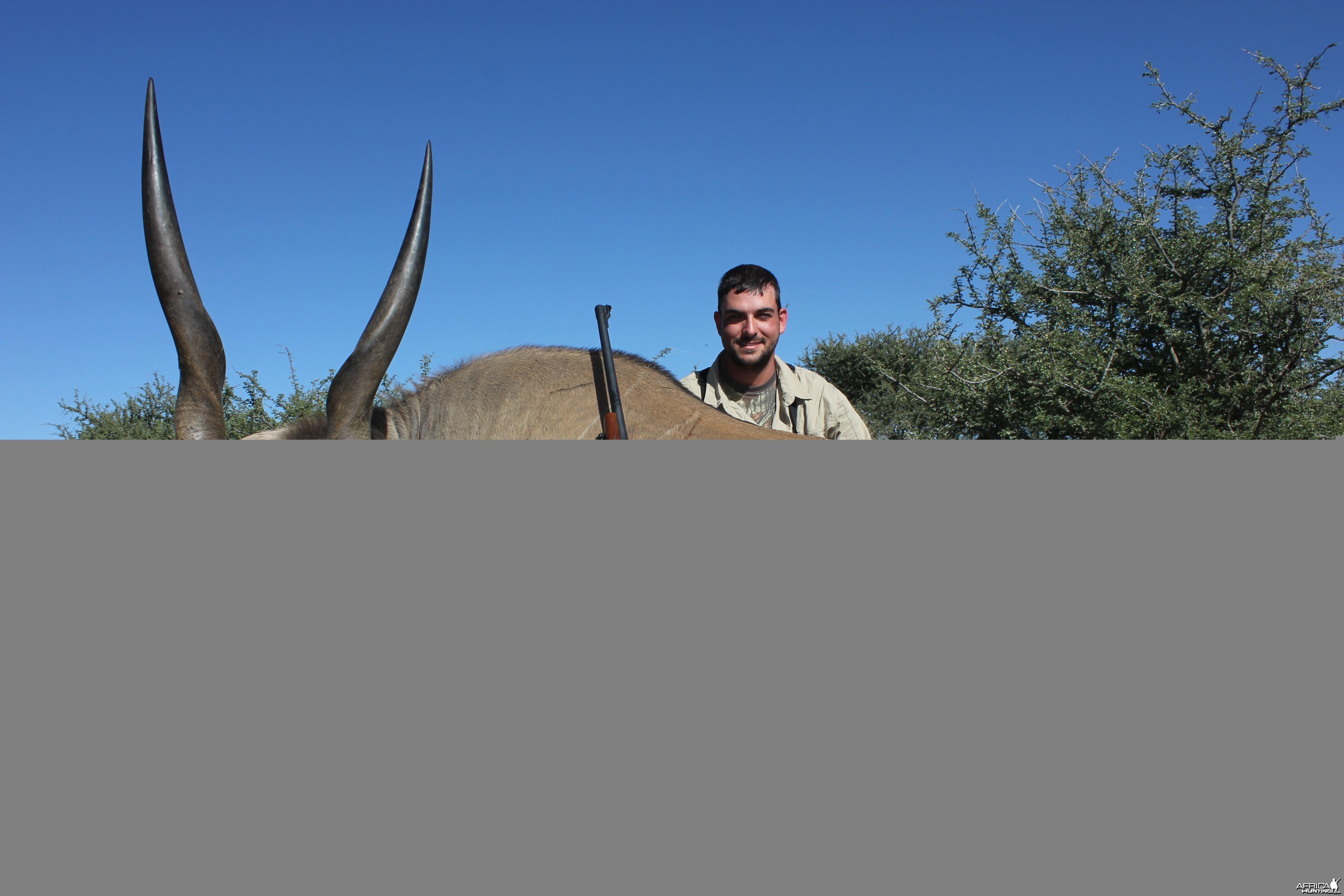 Eland Namibia 2012