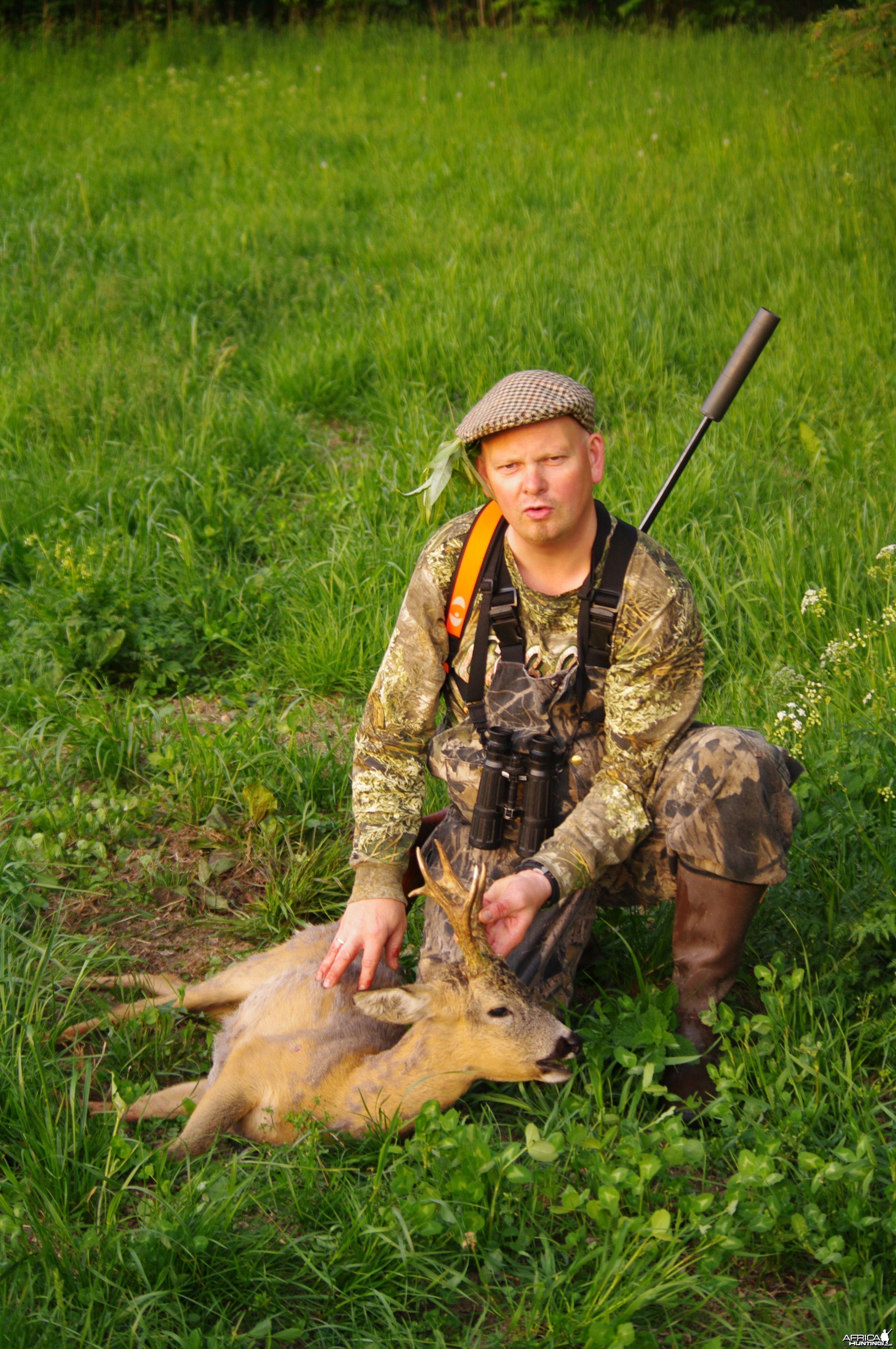 hunting roebucks in the czech republic