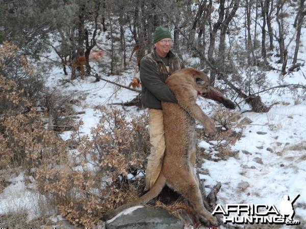 New Mexico mt lion