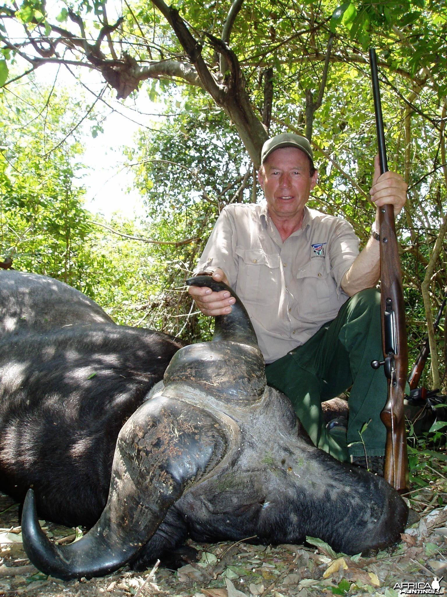 Gonabisi Tanzania Cape Buffalo