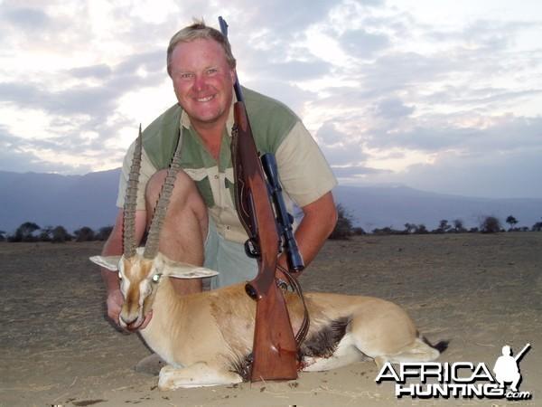 Thomson's Gazelle Tanzania