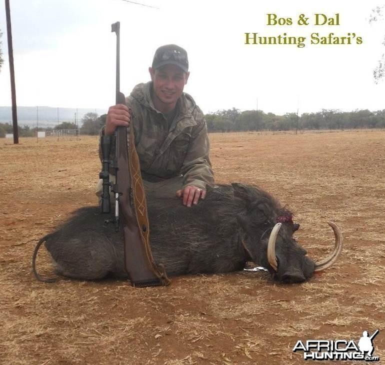 17.5 Inch Warthog