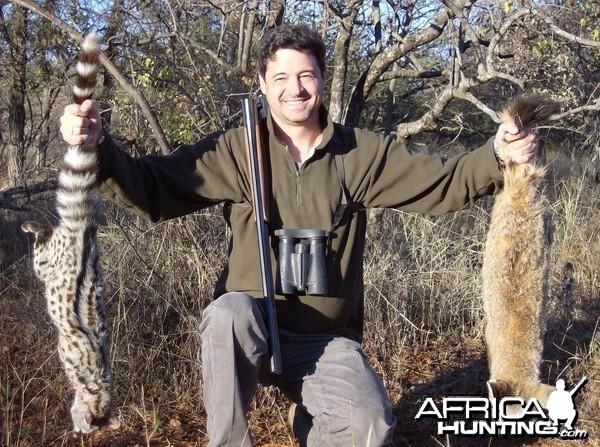 MBUYU SAFARIS - Bat-eared fox