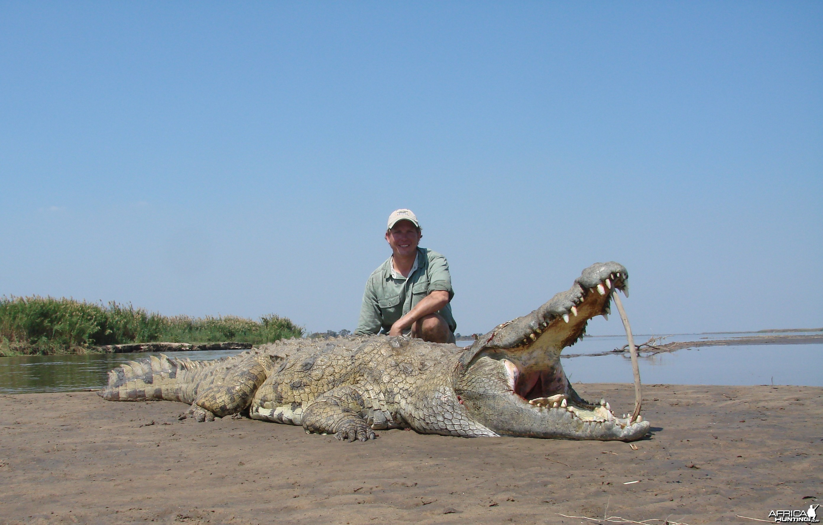 Croc in Mozam