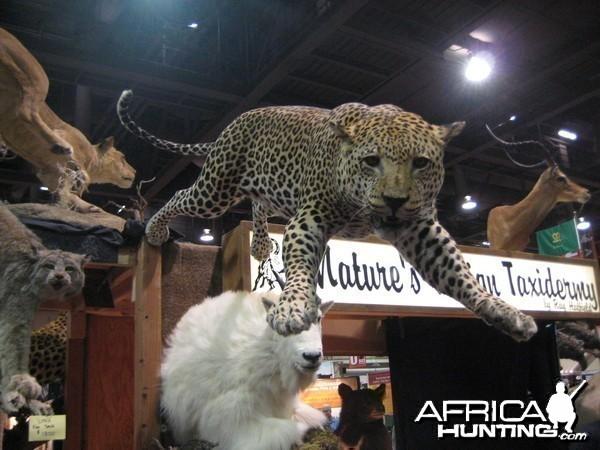 Taxidermy at Safari Club International Convention