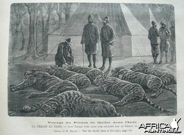 Hunting Tiger India 1876