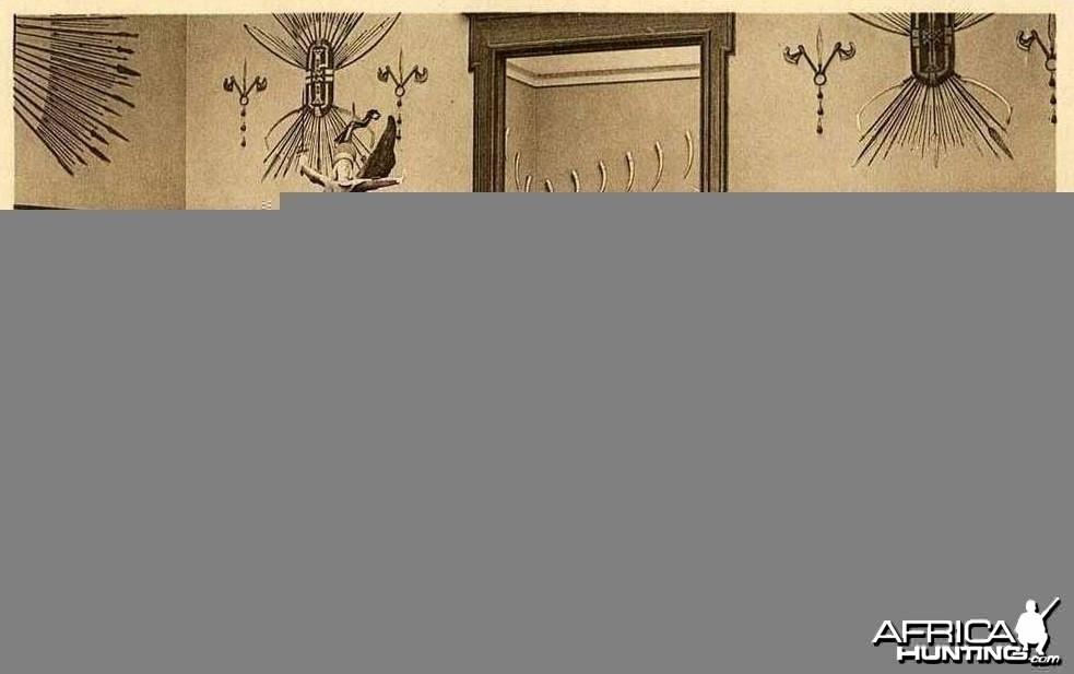 Hunt Museum in Congo Belge