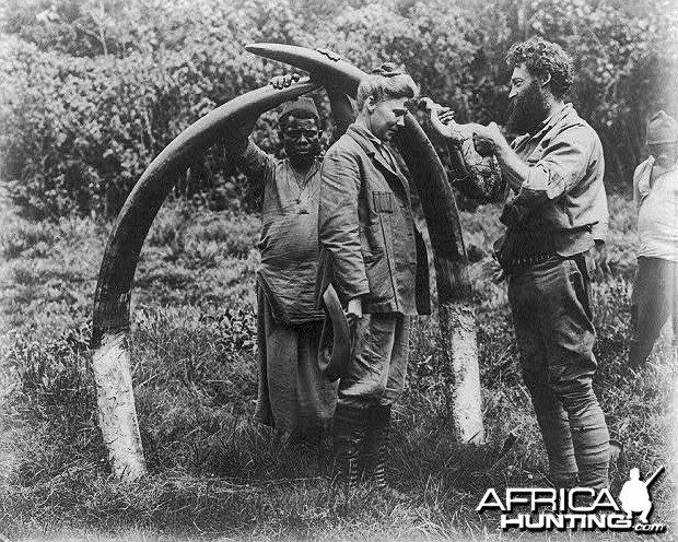 Tusks 1907