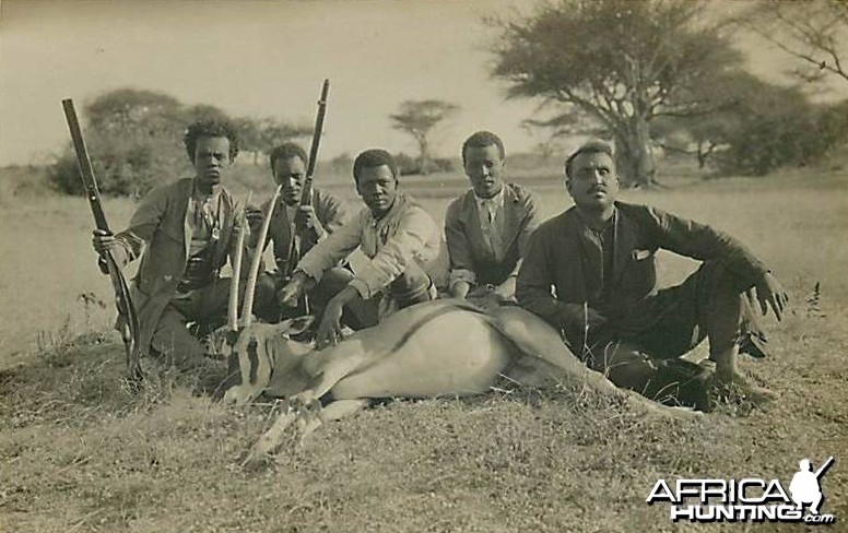 Hunting Oryx