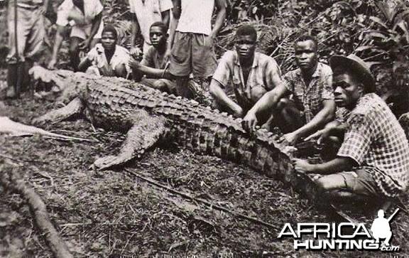 Hunting Croc