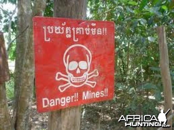 Mind the Minefield