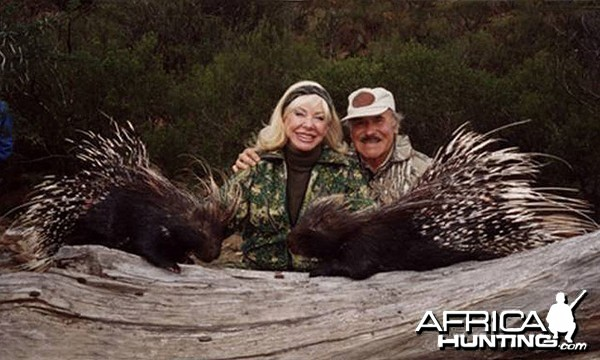 Hunting Porcupines