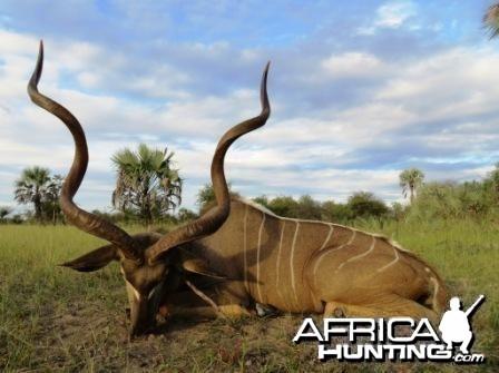 Kudu taken on Baobab Game Ranch NAMIBIA Feb. 2013