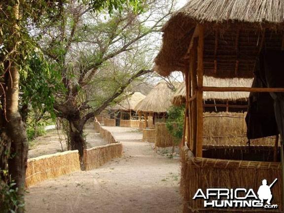Camp In Tanzania