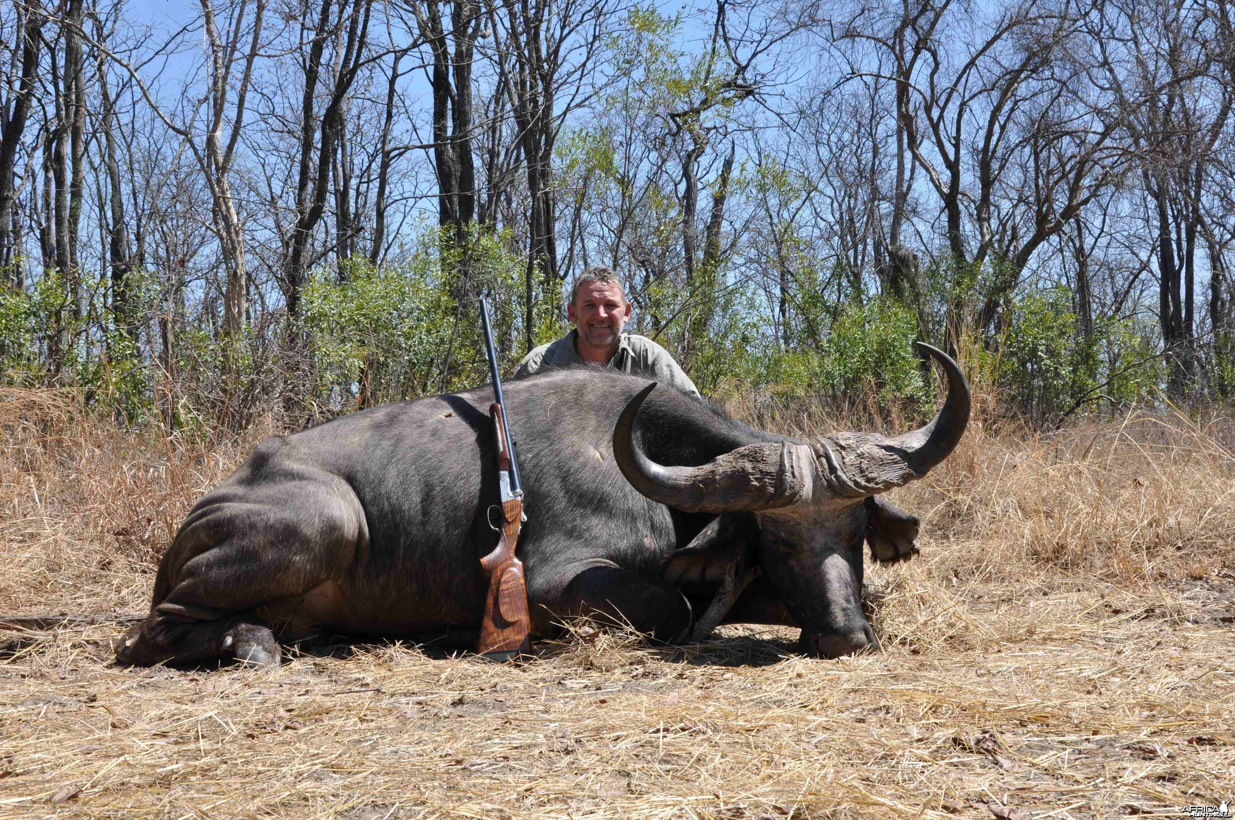 Big old Dagga-boy hunted in the Gwayi, Zimbabwe