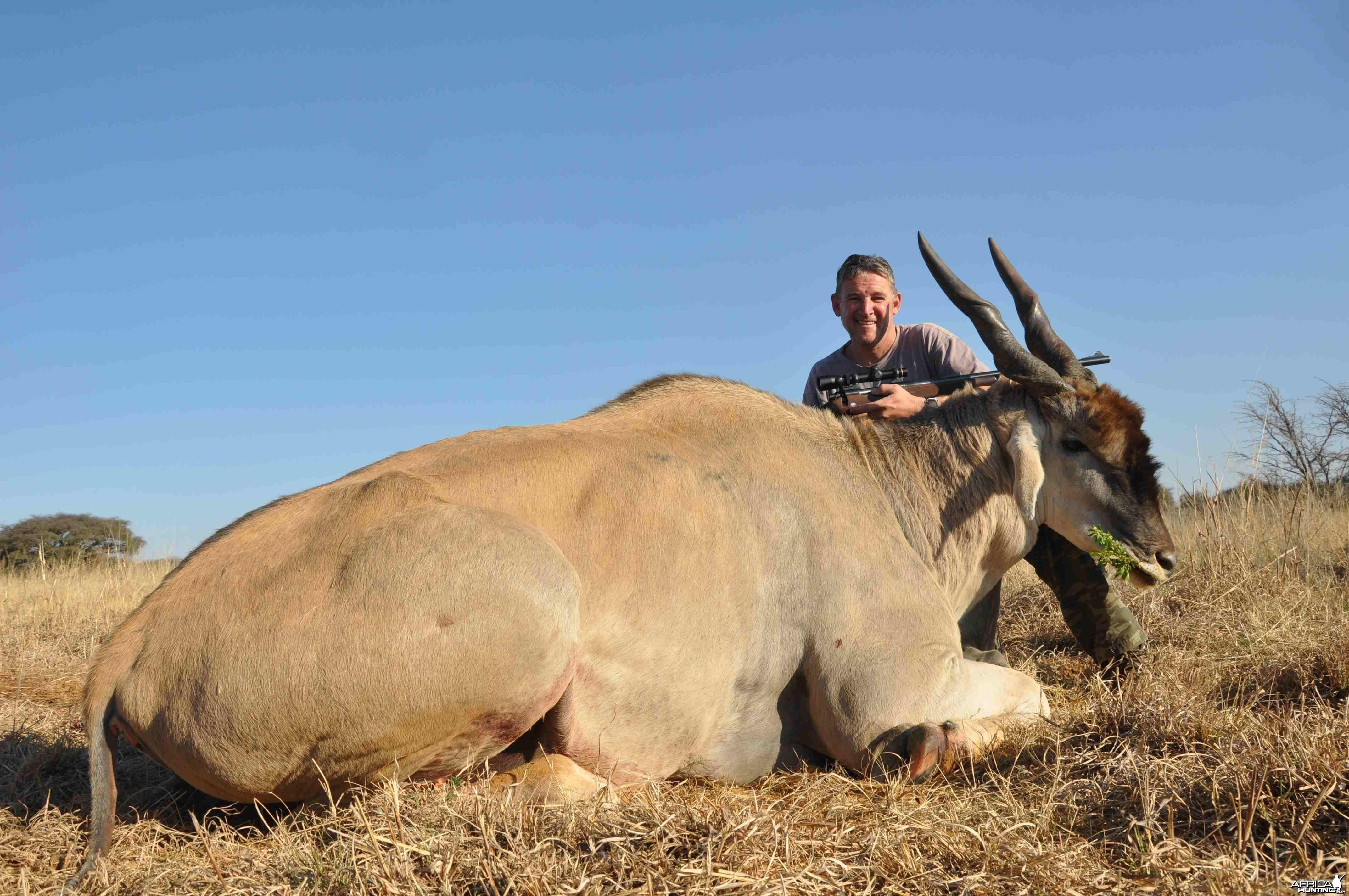 Massive Eland Bull