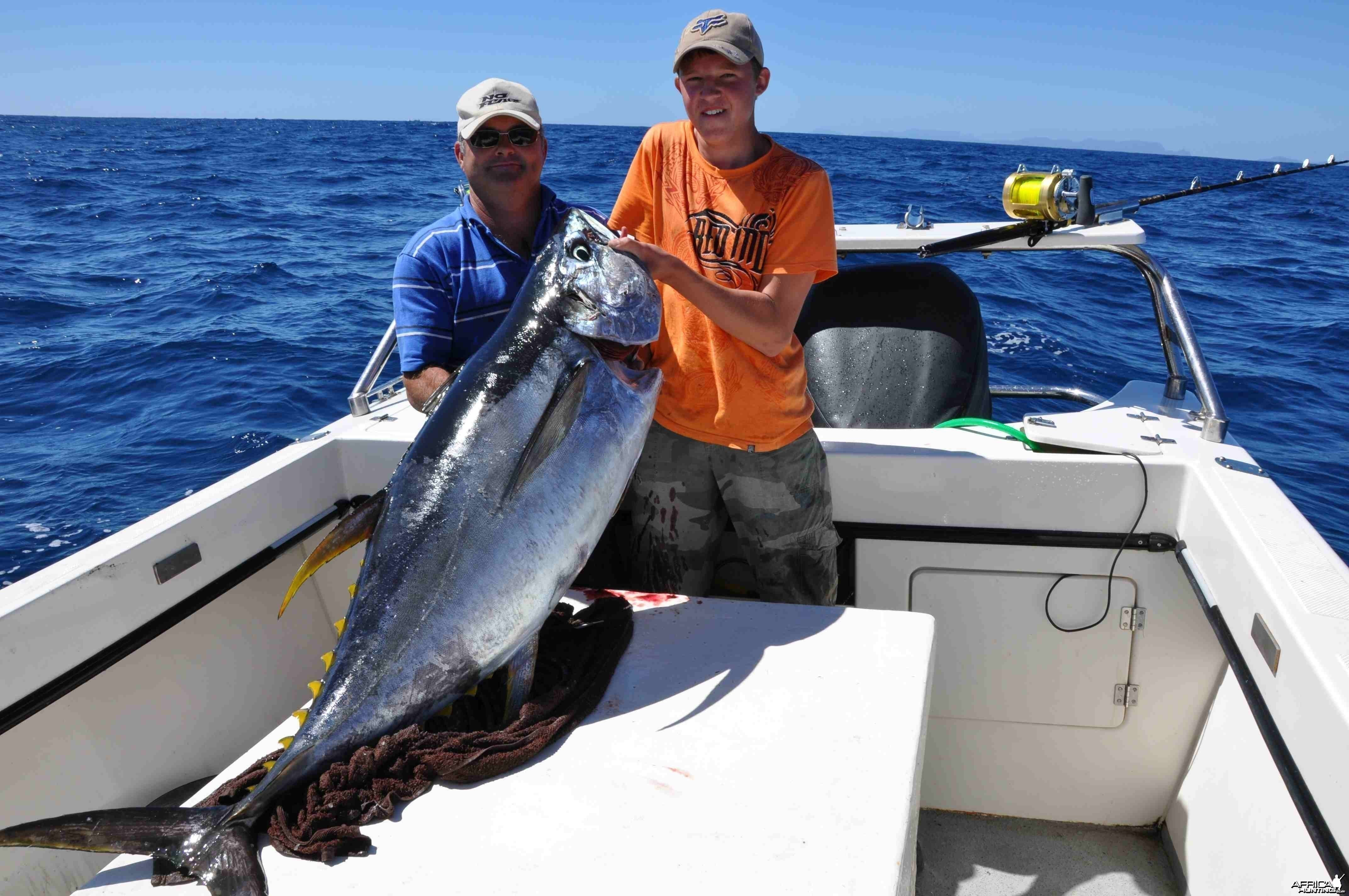 Yelowfin Tuna off Cape Canyon, South Africa