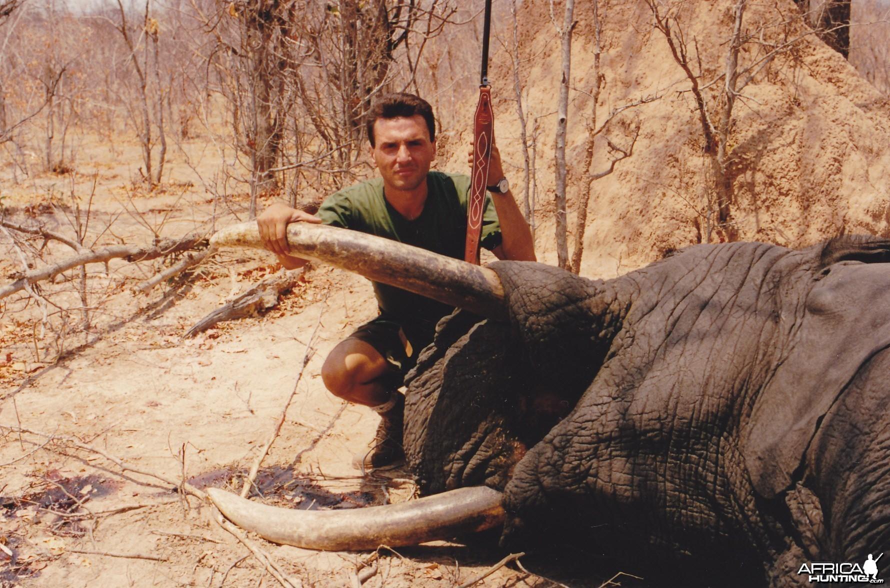 50 lbs elephant trophy
