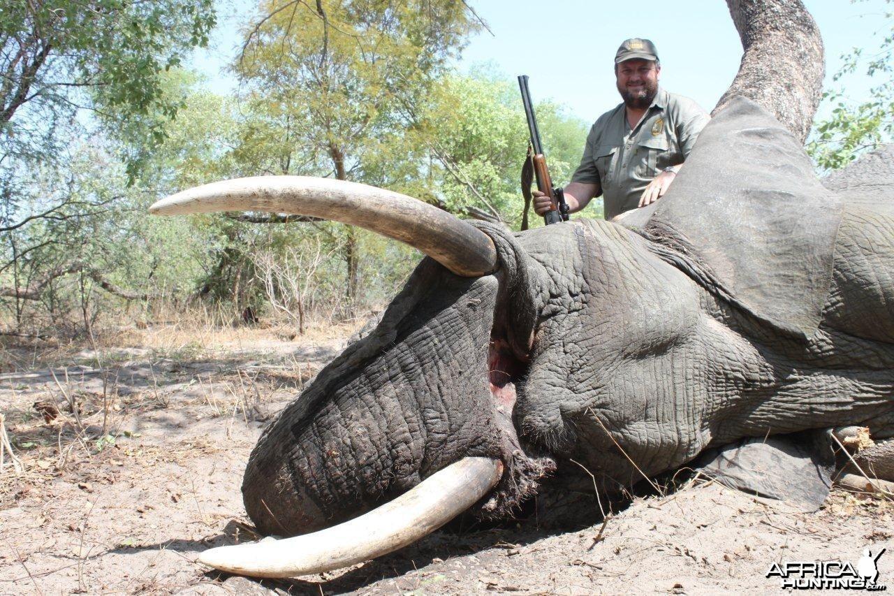 Caprivi Elephant