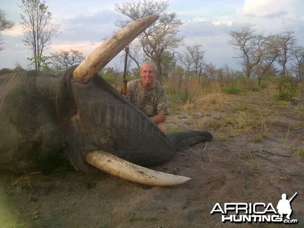 Nov 2012 Elephant Bull in Caprivi