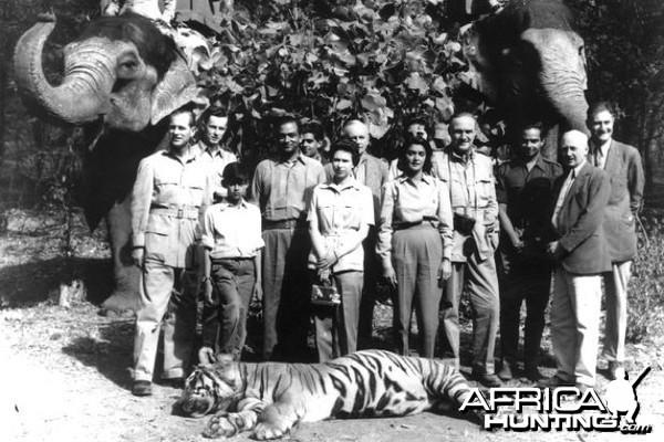 Prince Philip Tiger