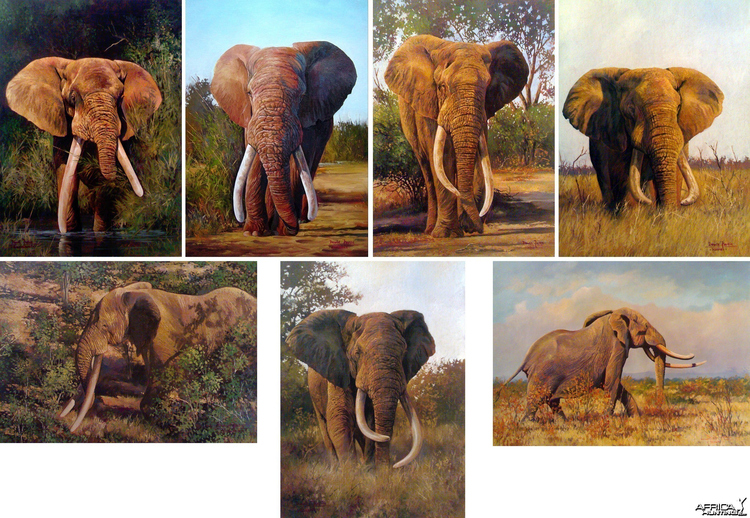 The Magnificent 7 by Dawie Fourie