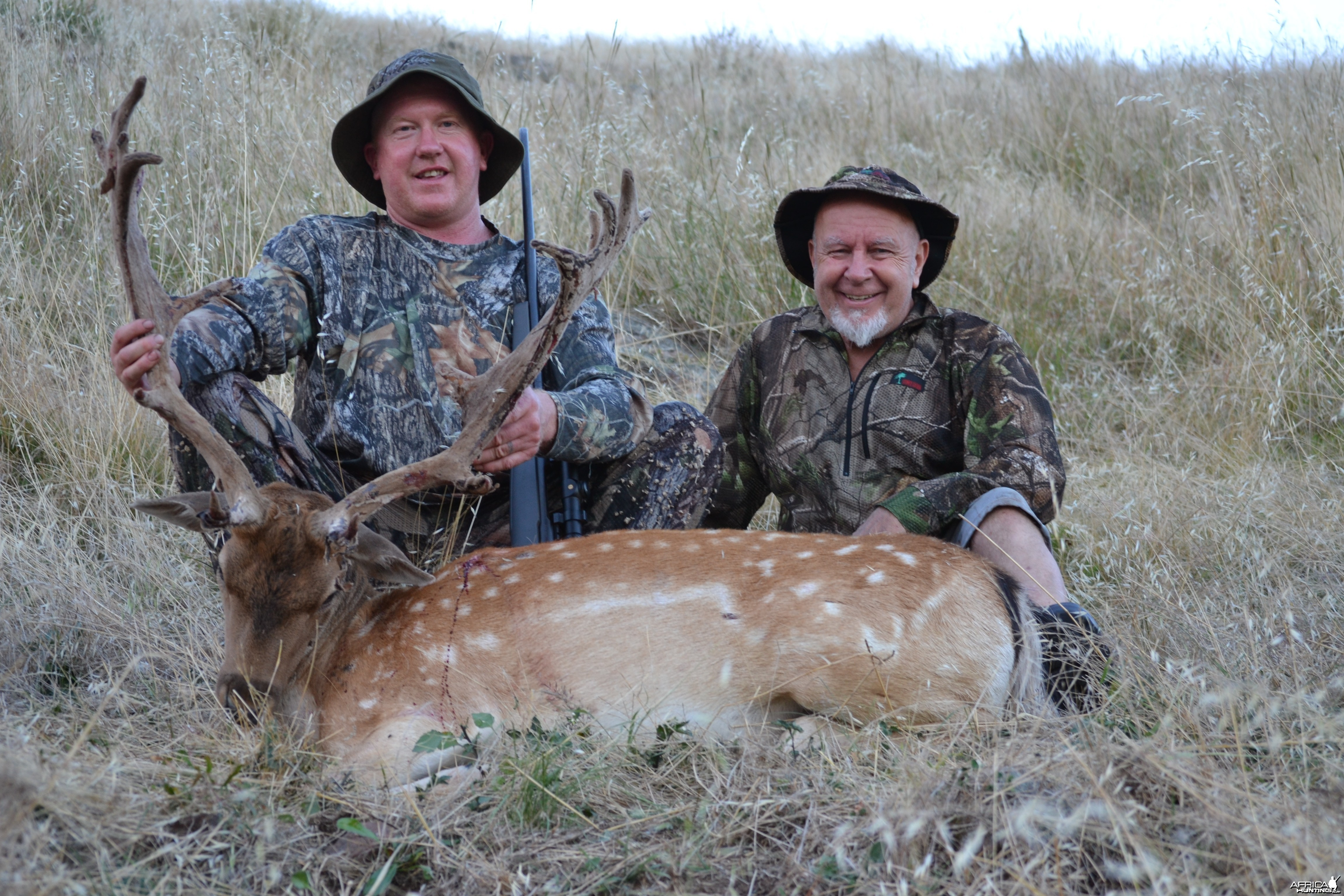 2012 fallow stag 256 douglas piont