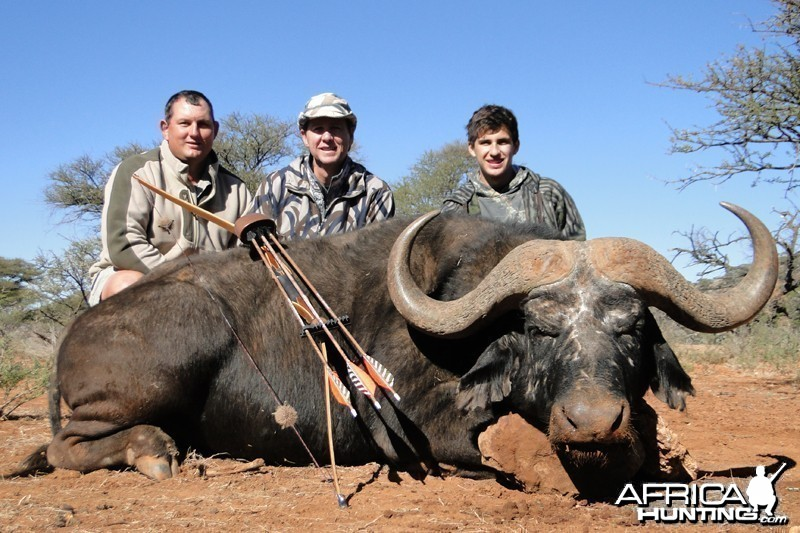 Buffalo bow hunt hunt with Wintershoek Johnny Vivier Safaris