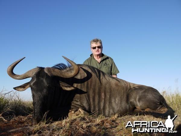 Blue Wildebeest hunted with Wintershoek Johnny Vivier Safaris