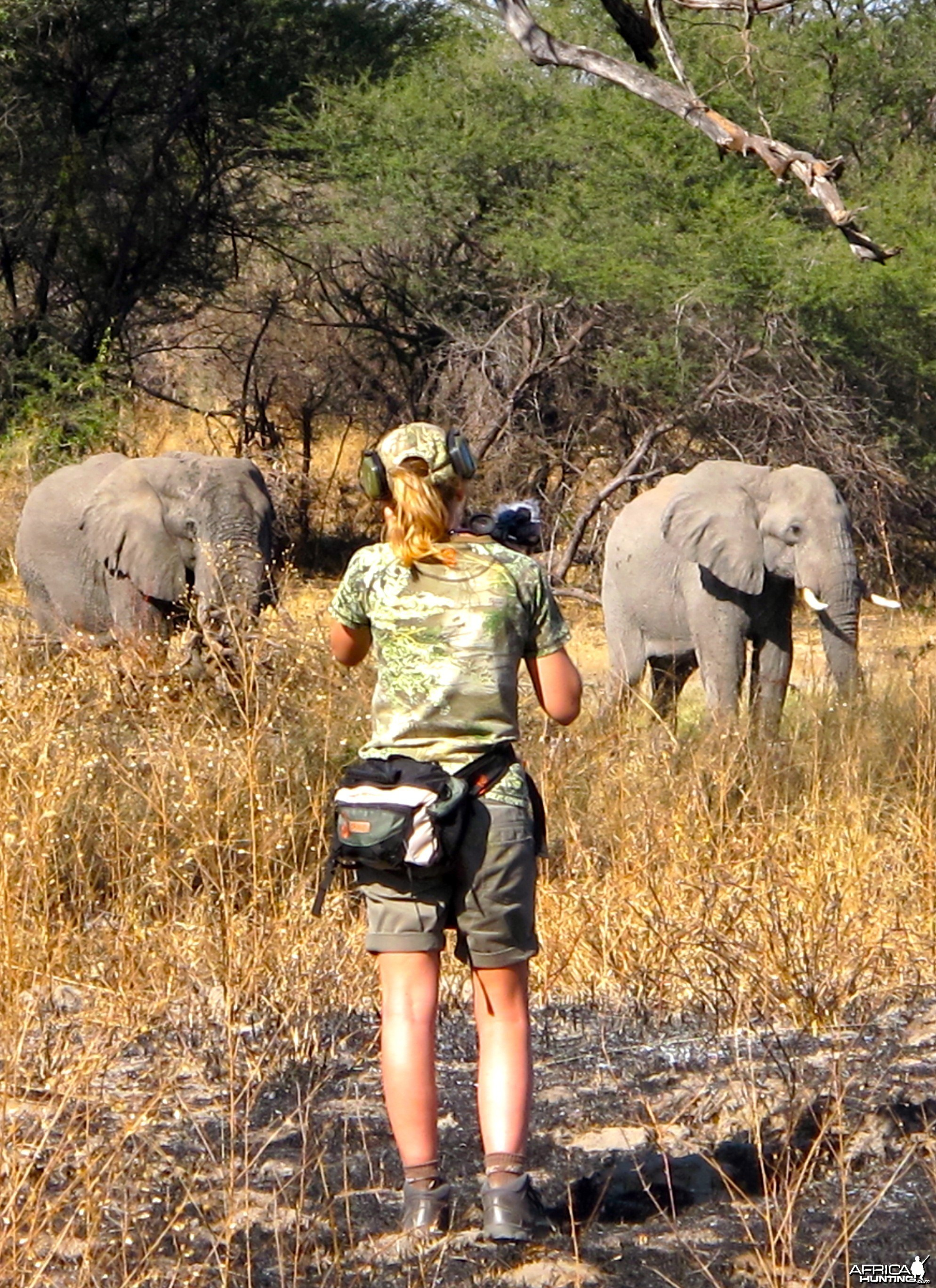 Elephant hunting in Caprivi