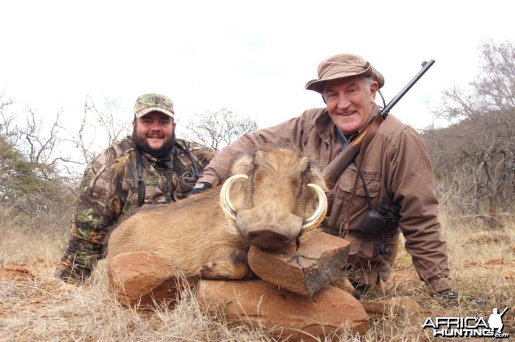 Warthog Sow Hunting