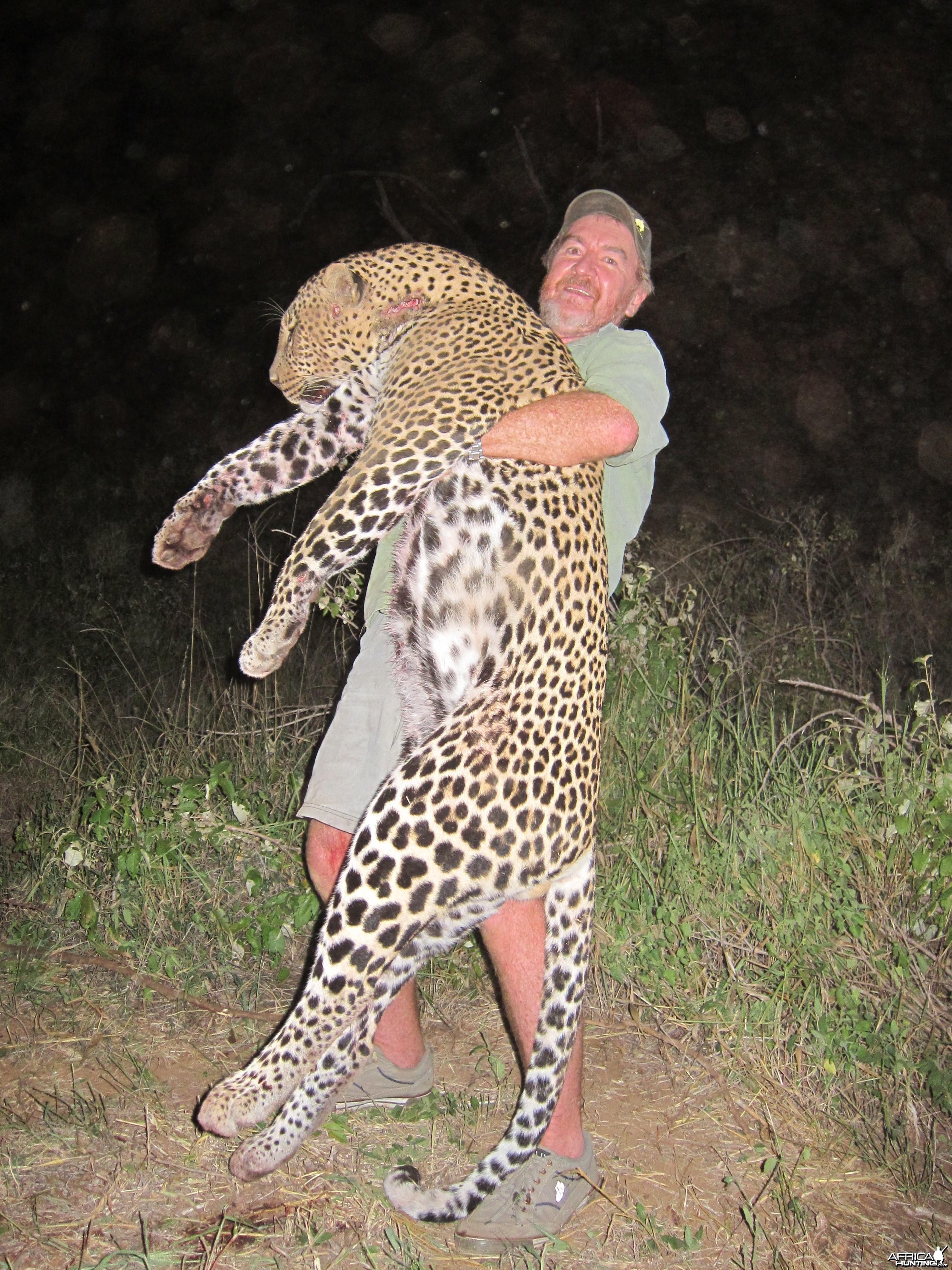 Leopard Masailand chui 2013