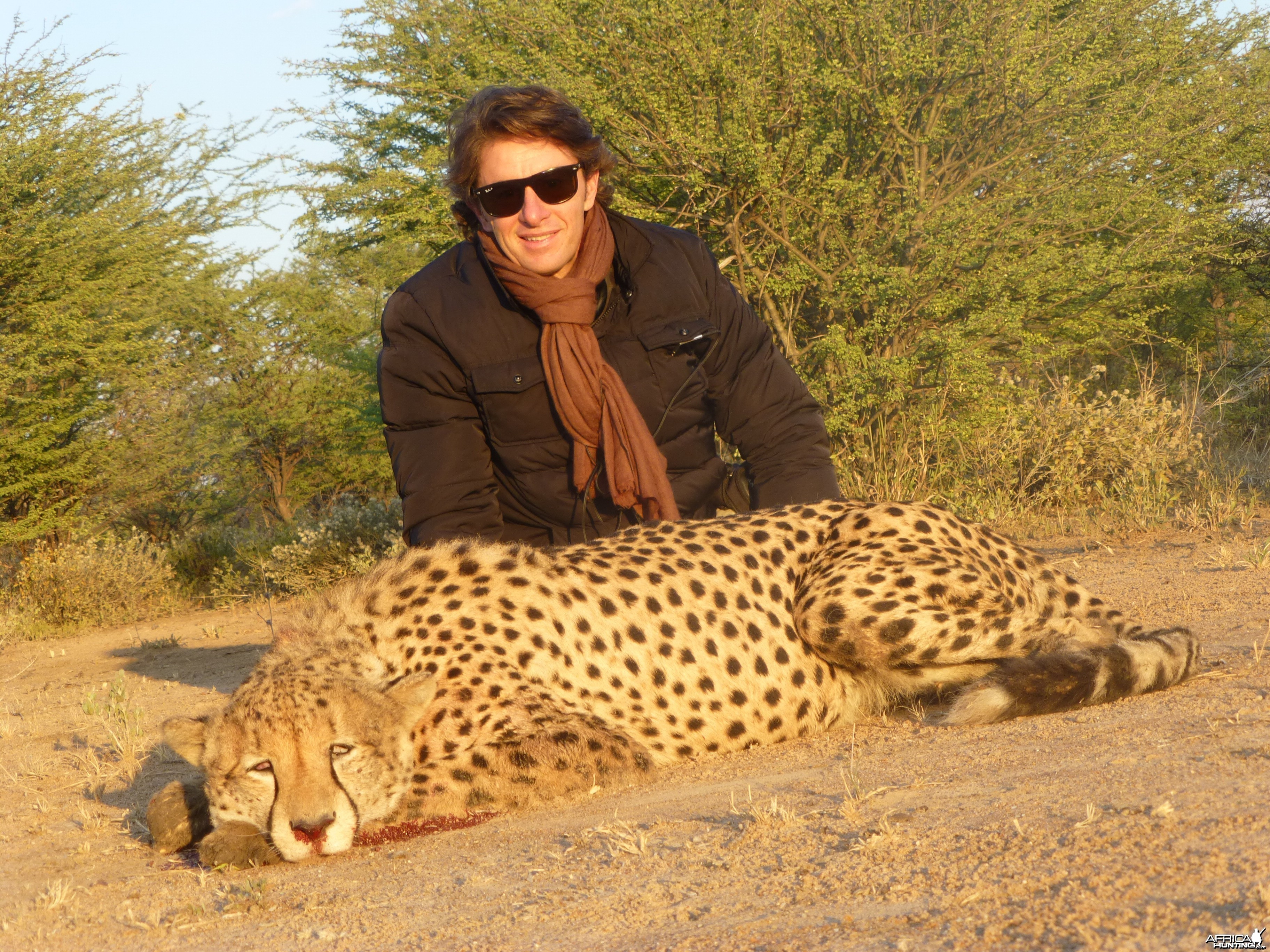 Cheetah hunted with Ozondjahe Hunting Safaris in Namibia