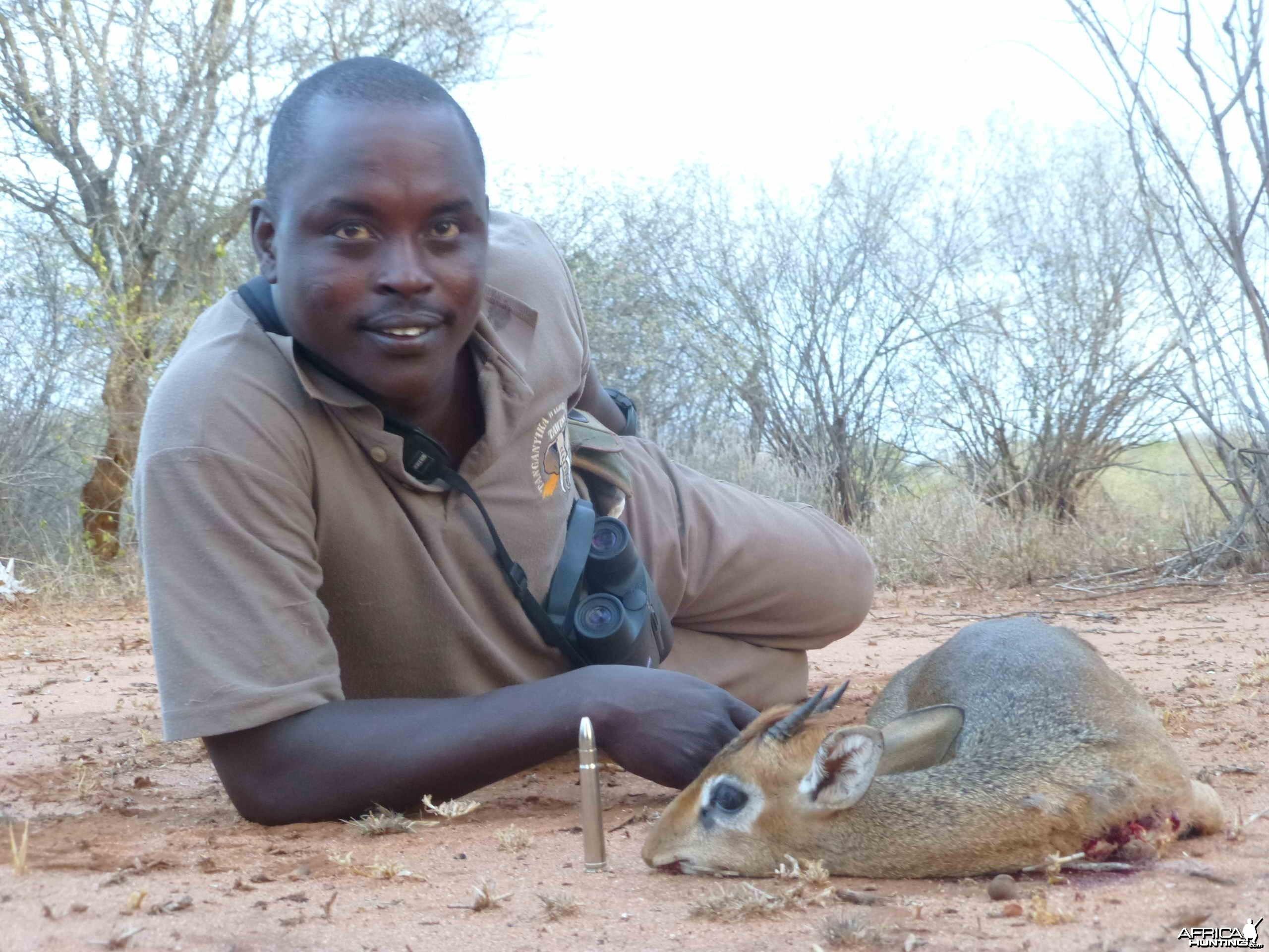 Dik Dik Tanzania