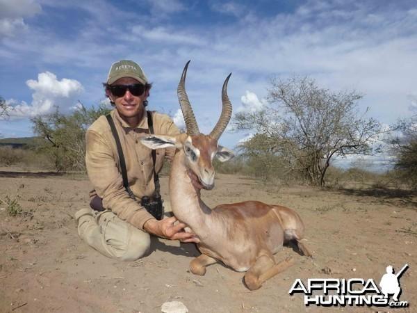 Gerenuk Tanzania