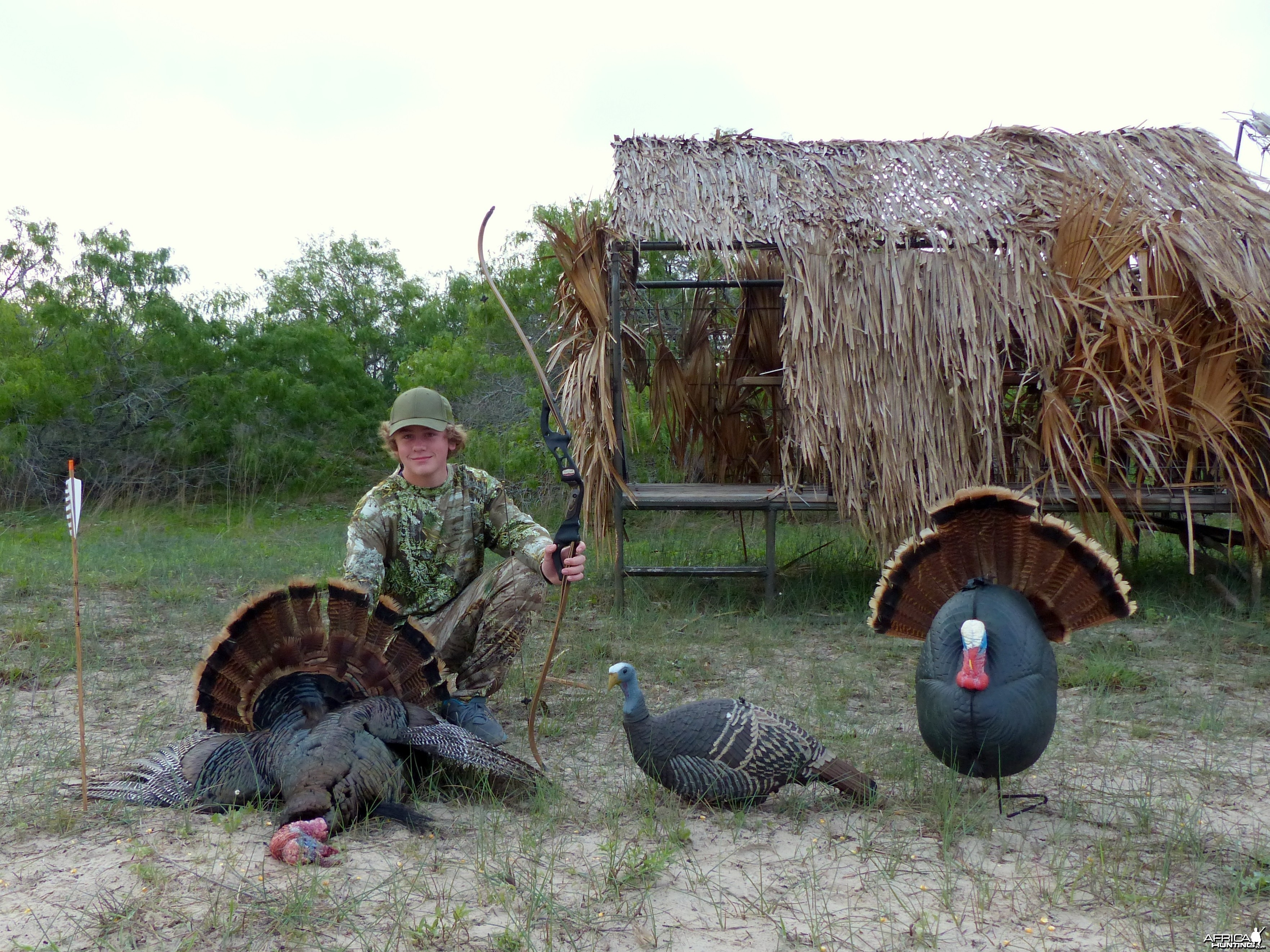 Recurve Turkey 2013