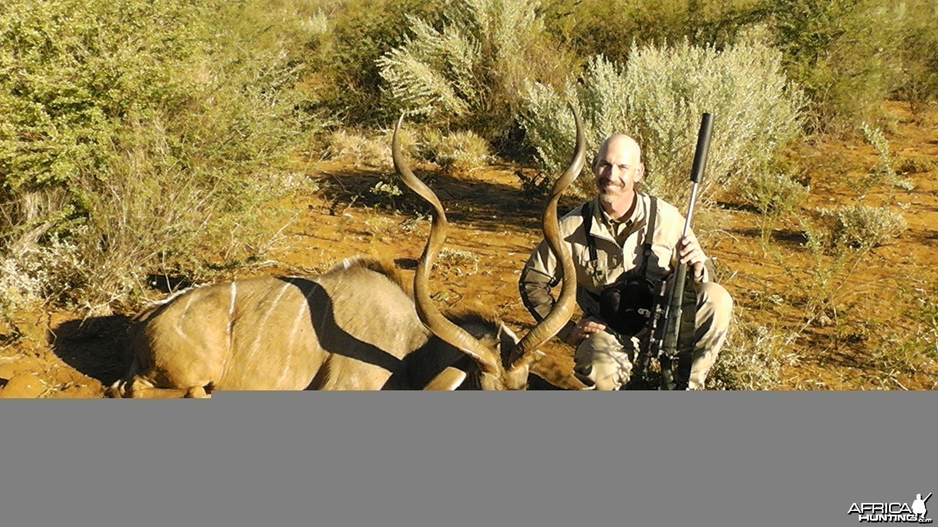 "53.5"" Greater Kudu Bull"