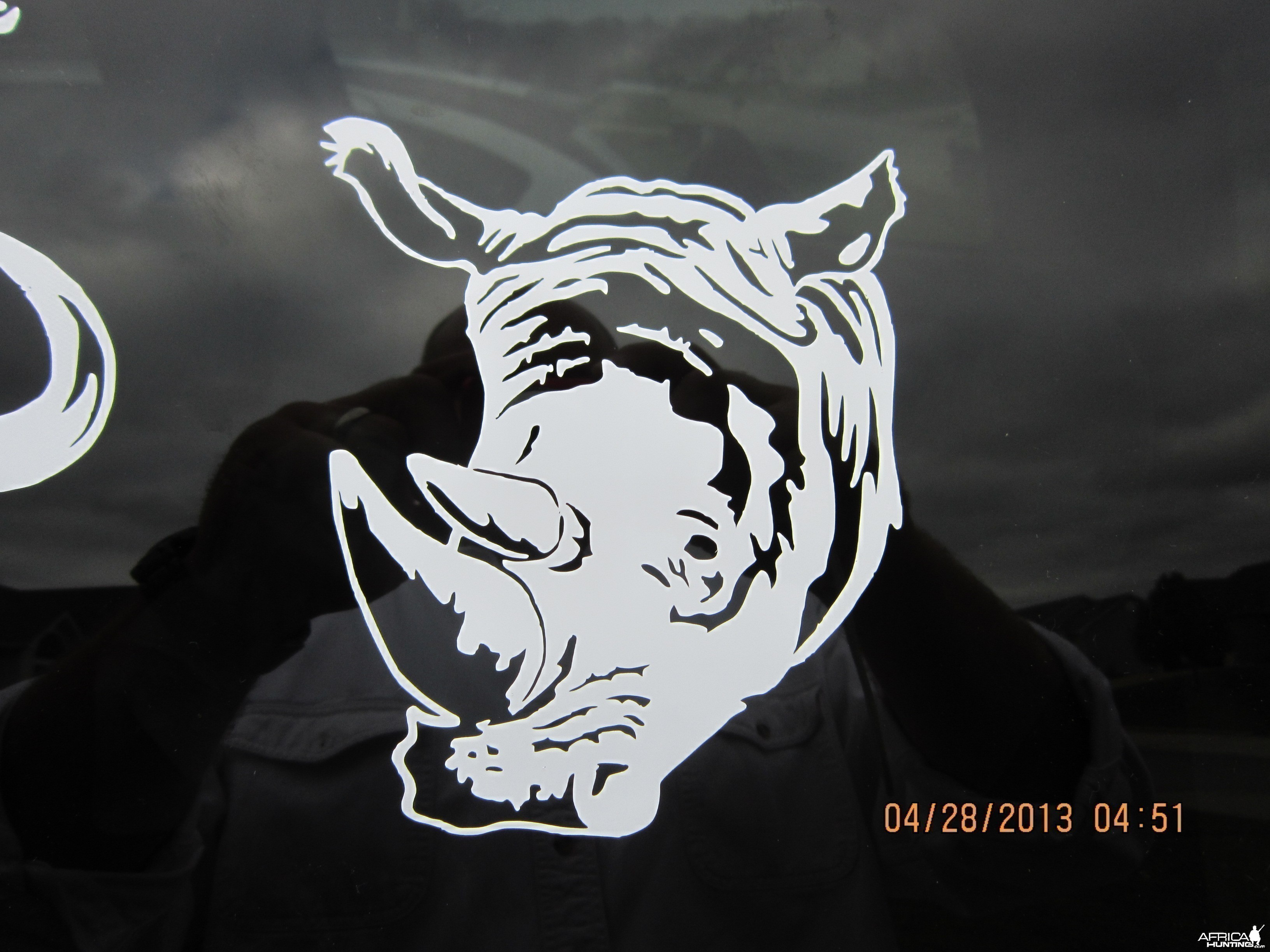 Rhino Decal Stickers