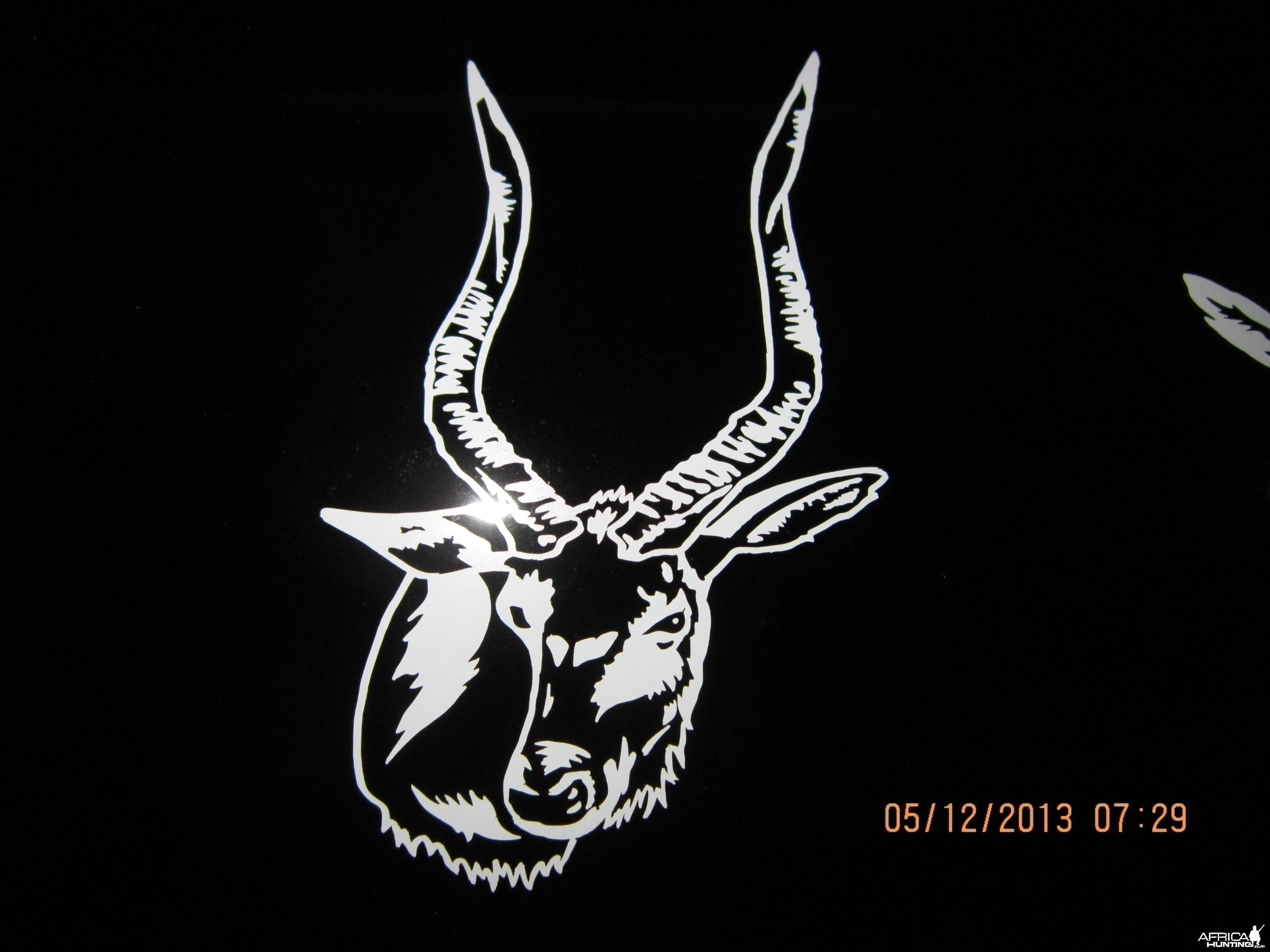 Nyala Decal Stickers