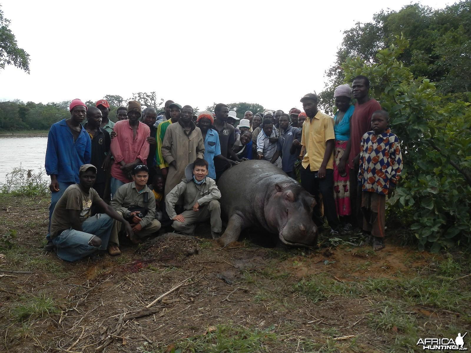 Problem Hippo