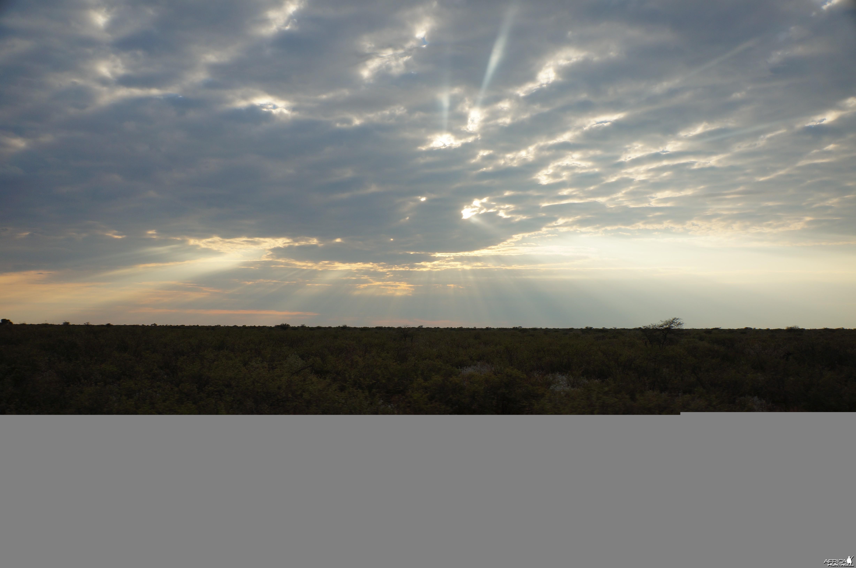 First Kalahari Sun Rise