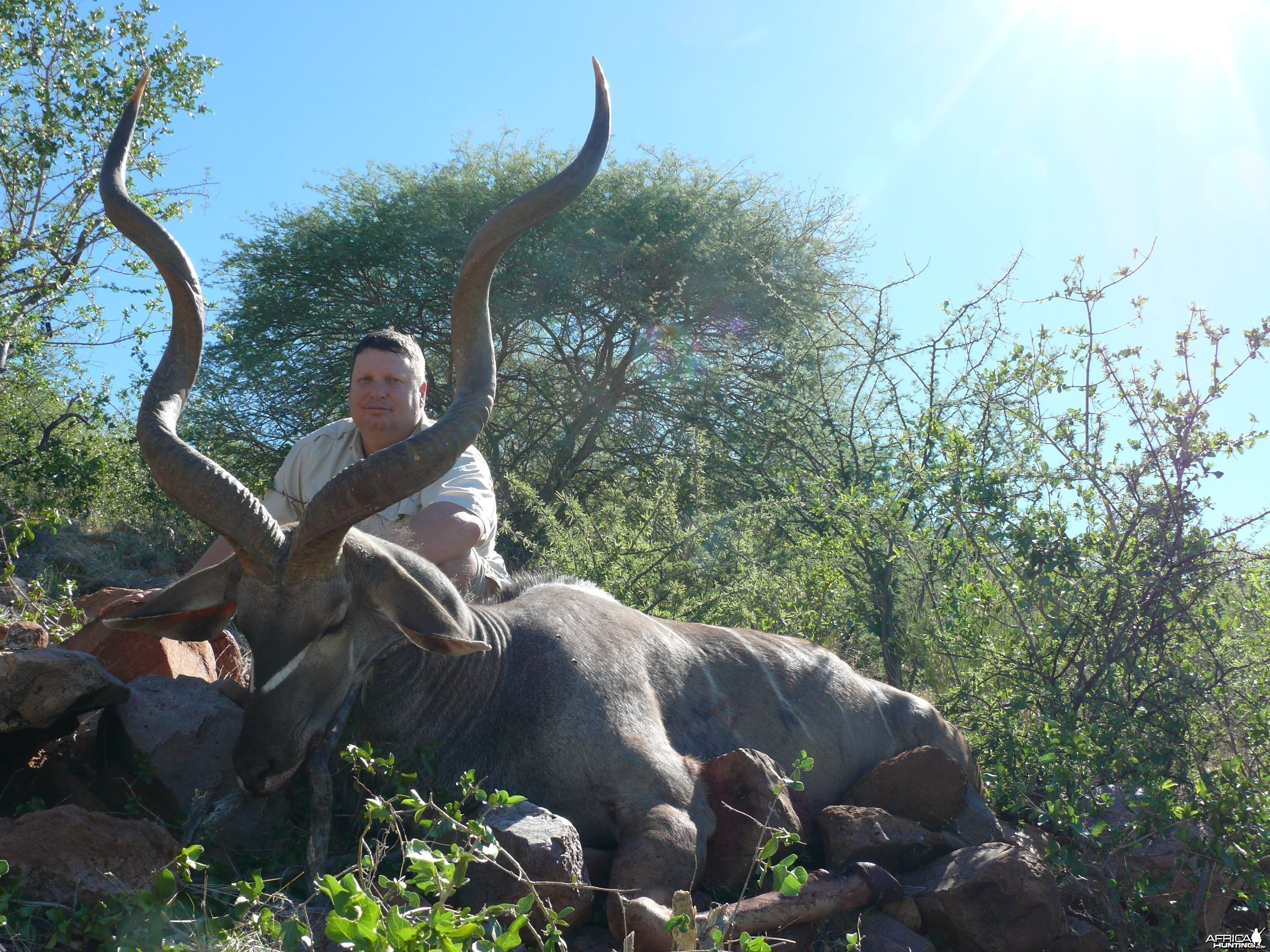 "54"" Greater Kudu Bull"
